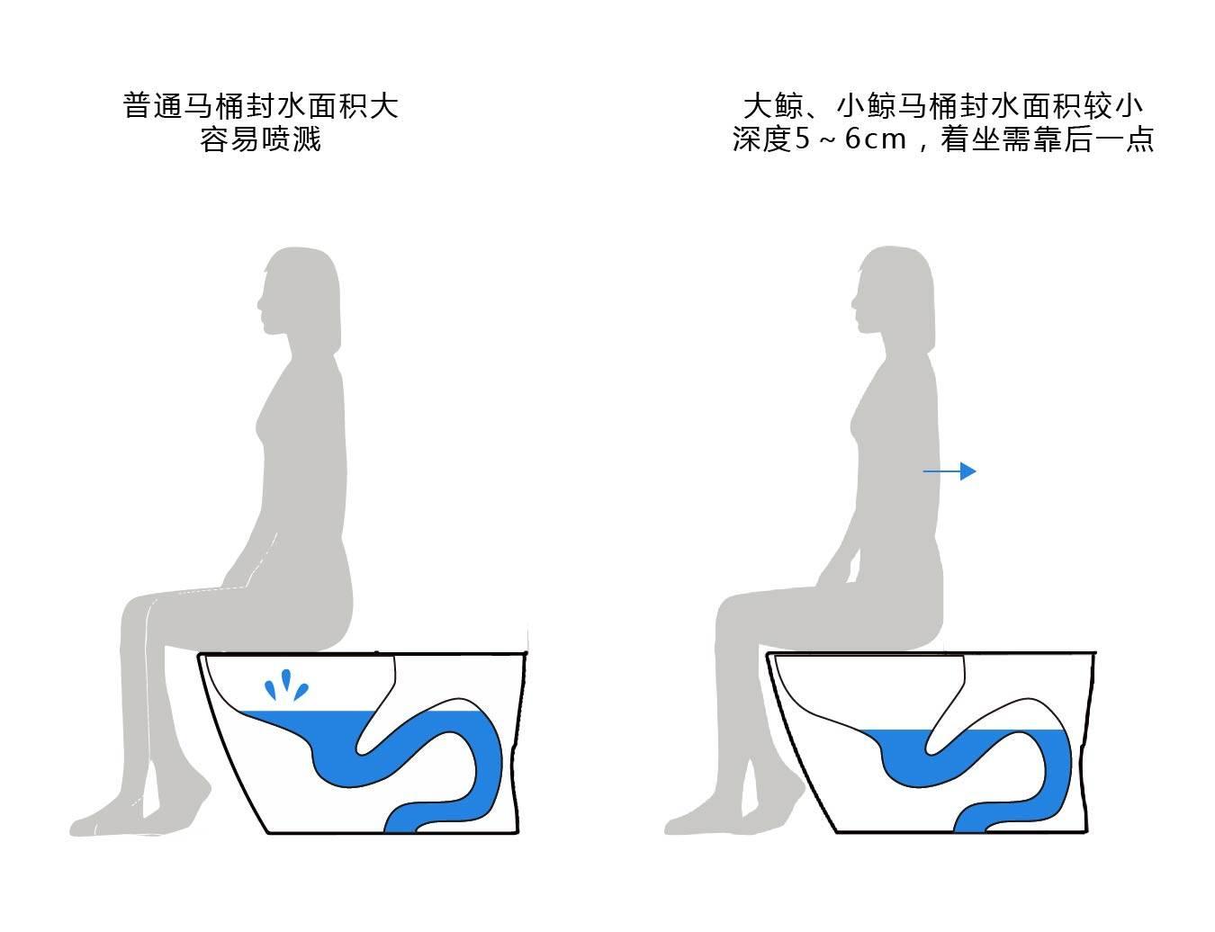 水鹿卫浴-马桶-智能马桶-水鹿智能马桶-大鲸/小鲸系列